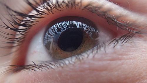eye-321961